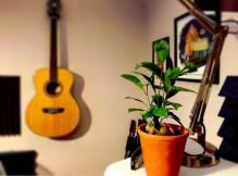 A New, Green Studio Addition
